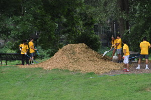 Oglethorpe volunteers spread mulch around tree grove in center of Park